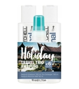 Aktion - Paul Mitchell Holiday Travel Trio Awapuhi