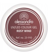 Alessandro Colour Gel 910 Rosy Wind 5 g