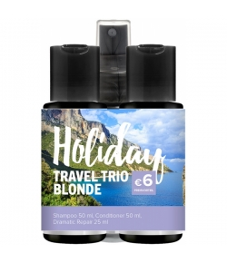 Aktion - Paul Mitchell Holiday Travel Trio Blonde
