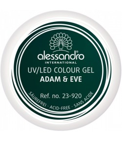 Alessandro Colour Gel 920 Greenwood 5 g
