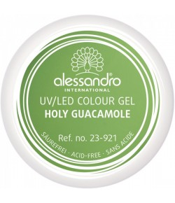 Alessandro Colour Gel 921 Holy Guacamole 5 g
