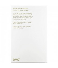 EVO Hair Style Mister Fantastic Your Tool for Creation (brown)