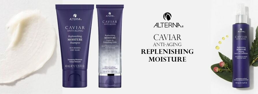 Alterna Replenishing Moisture